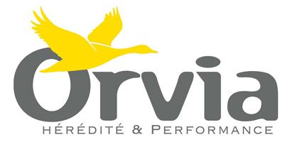 Orvia logo