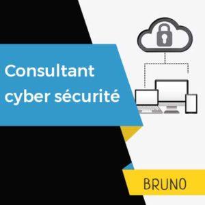 consultant cyber securité