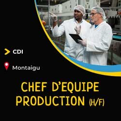 chef d'equipe production