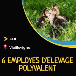 employés_d_elevage_polyvalents