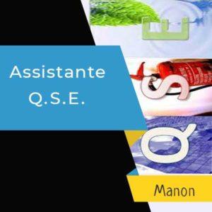 Assistant_QSE